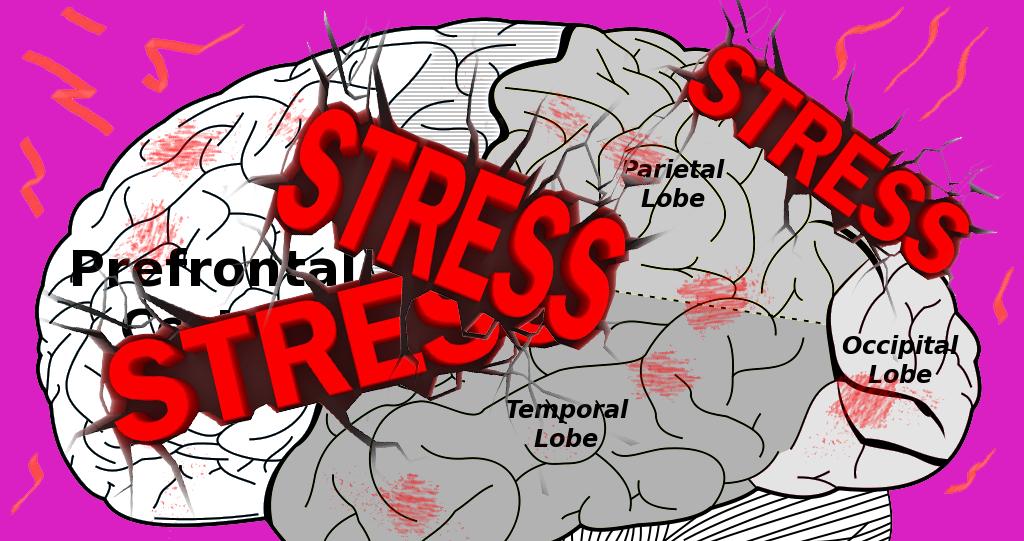 Förebygg stressen med rätt metoder